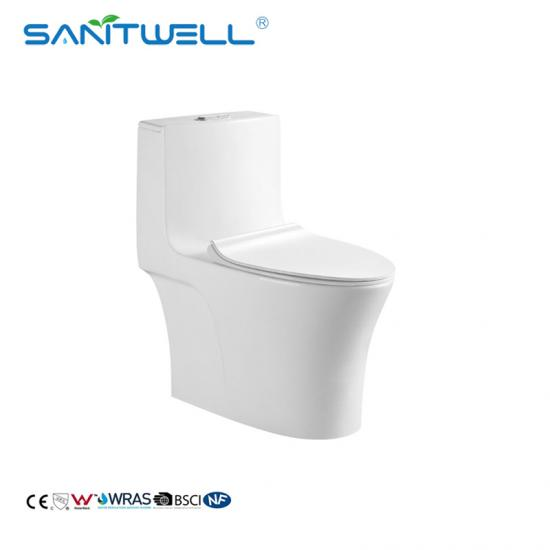 round one piece toilet