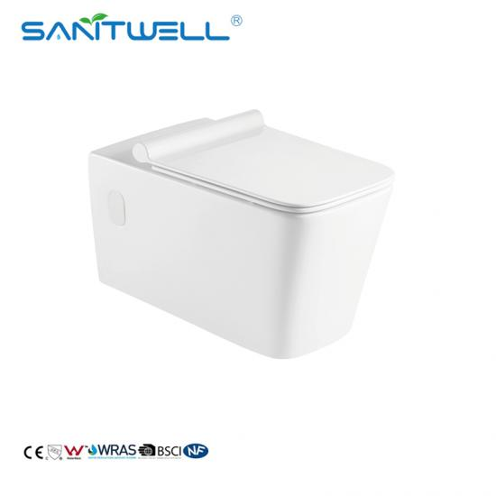 European Wall Hang Toilet