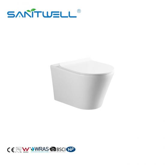 Wall Mount Toilet with In-Wall Tank
