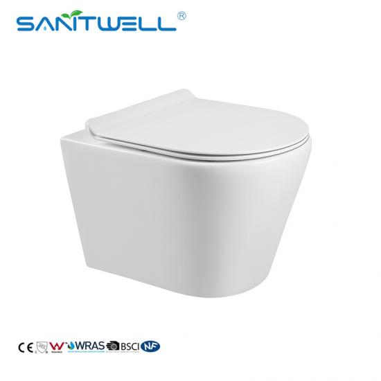 Ceramic Rimless Wall Hung WC